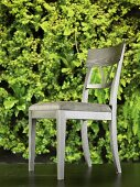 Gray, upholstered dining room chair in front of wallpaper with green plants printed on it