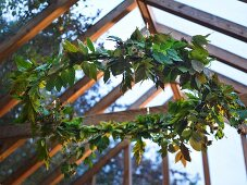 A wreath of leaves hanging from a glass ceiling