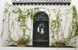 Open front door in the plant covered facade of a Moroccan villa