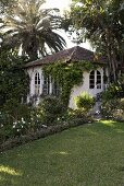 Villa with arched windows in a tropical garden with palms