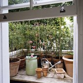 An open window looking onto a mini garden