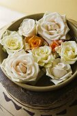 Various coloured roses in an earthenware pot