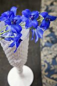 Delphiniums lying on top of a white vase