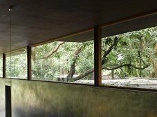 Continuous transom window with view of garden above concrete wall