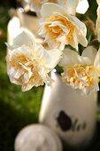 Narcissus flowers in an enamel jug
