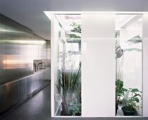 Plants in part-glazed stairwell next to reflective fronts of open-plan, stainless steel kitchen