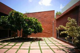 Paved courtyard with trees