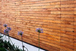 Detail of texture of house facade with horizontal wooden battens