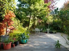 Wooden decking with plant pots and seating in established garden