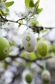 Decorative eggs hanging on flowering twigs in garden