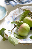 Freshly harvested apples with leaves and a section of twig on antique plates