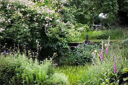 Naturnaher Garten im Sommer
