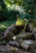 Haufen mit Holz im Waldgarten