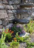Summer flowers next to stone wall with wooden steps