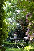 Idyllischer Sitzpatz unter Bäumen im Garten
