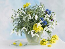 Bouquet with snowdrops in opaque glass case