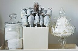 Dried poppy seed heads between glass containers of cotton wool and tissues