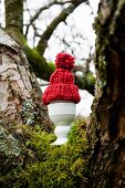 Egg with bobble hat in eggcup on moss