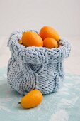 Knitted bag filled with kumquats