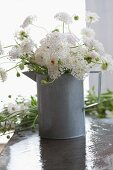 Roses and scabious in metal jug