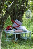 Colourful cushions on bench around tree trunk and bird cage filled with apples