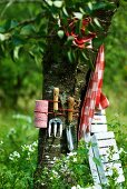Tree decorated with gardening tools