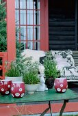 Red ceramic tealight holders and edelweiss in planters on garden table