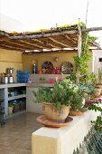 Potted herbs on balustrade of Mediterranean roof terrace with fitted kitchen counter along wall