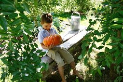 Young boy sitting with a pumpkin on a garden bench