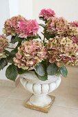 Pink hydrangeas in antique Greek-style stone vase