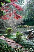 Baum mit roten Blättern am Seeufer mit Steinplattenweg und Pagode