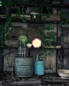 Vintage-style metal barrel and watering can against grey wooden wall with shelves and covered in climbing ivy