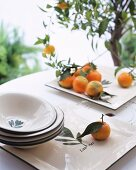 Mandarin oranges with leaves on a tray with a small tree in the background