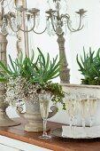 Champagne flutes, flower arrangement in amphora and candelabra