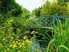 Gently curved humpback bridge with gold discs on blue balustrade spanning established garden pond in summery, idyllic atmosphere