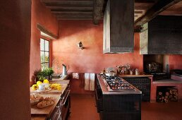 Modern furnishings in Mediterranean kitchen with brick red walls