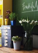 Bouquet and house plants on metal office cabinet in front of green chalkboard