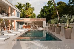 Luxurious, exotic pool complex with sun loungers and large potted palm trees