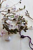 Wreath of alder catkins and hyacinth florets
