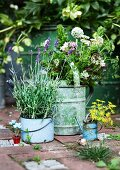 Lavender, dill and onion flowers in old enamel container