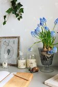 Diary, apothecary's bottles and grape hyacinths on small table