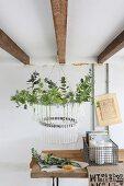 Selbstgemachter Lüster aus einem Fahrradreifen und Glasröhrchen mit frischen Gartenkräutern und Zweigen