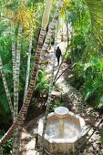 Lustwandeln in tropischem Garten
