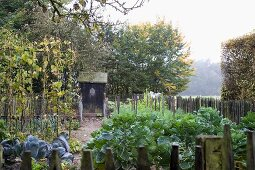 Autumnal vegetable garden