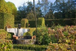 Garden with vegetables, old well, scarecrow and clipped hedges