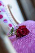 Rote Rose auf violett bezogenem Polster