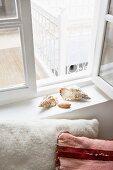 Stilleben mit Muscheln auf Fensterbrett und Dekokissen davor
