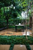 Tropical garden: vase on table on tiled terrace, wet and glossy with rain