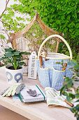 Gardening utensils, potted plants and vintage birdcage on garden table