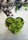 Heart-shaped cookie cutter filled with moss to make a hanging ornament and a branch with Aronia berries